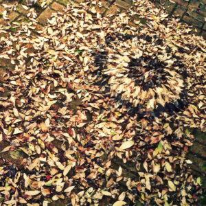 Melkhout 11, Annie le Roux, documentation of land art