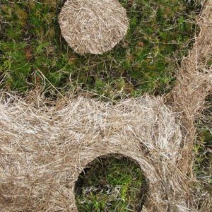 SOLILOQUY 14, Annie le Roux, documentation of land art