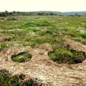 SOLILOQUY 15, Annie le Roux, documentation of land art