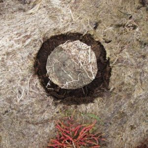 SOLILOQUY 19, Annie le Roux, documentation of land art