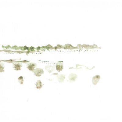 Tankwa Landscape V, Annie le Roux