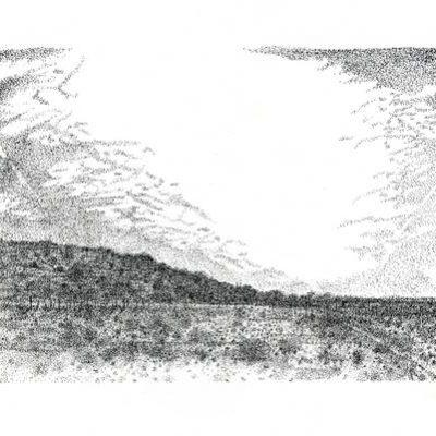 TANKWA KAROO II, Annie le Roux, Ink on paper, 2016