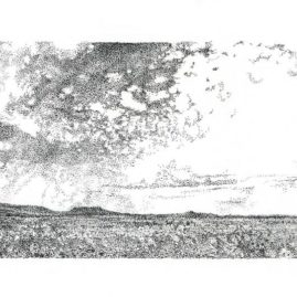 Fine Art ink landscape drawing on paper, of a Karoo landscape in South Africa