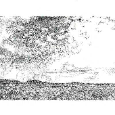TANKWA KAROO III, Annie le Roux, Ink on paper, 2016
