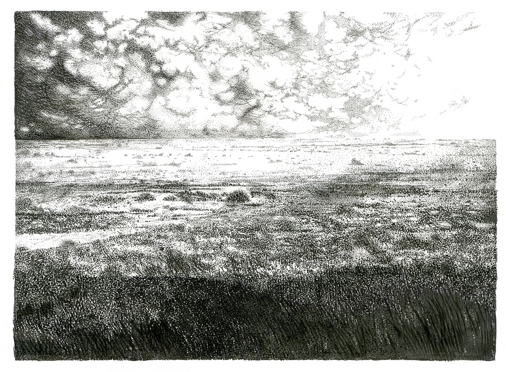 landskap_met_reen_oor_die_vlakte
