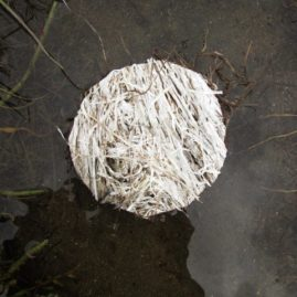 White circle - Soliloguy - documentation of land art created by Annie le Roux