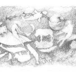 Original fine art drawing by Annie le Roux
