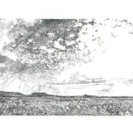 Fine Art ink landscape drawing on paper, of a Karoo landscape in South Africa
