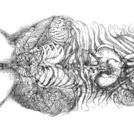 Fine art ink drawing with flower, hands, organs in symmetry